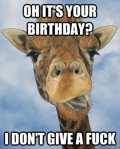 birthday meme funny