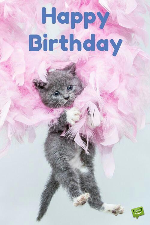 cute birthday wishes